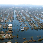 Katrina Series: November 2005